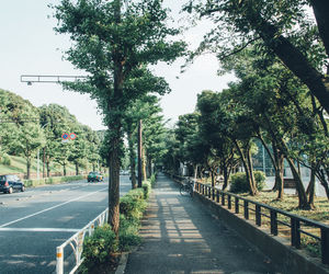 calm, green, and japan image