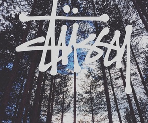 heaven, stussy, and woods image
