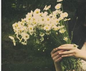 Image by Gvantsa