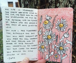 art, flowers, and quotes image