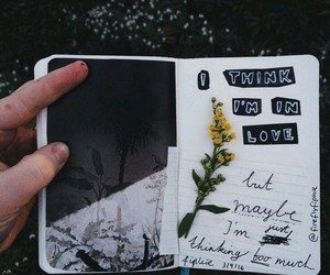 diary, quotes, and in love image