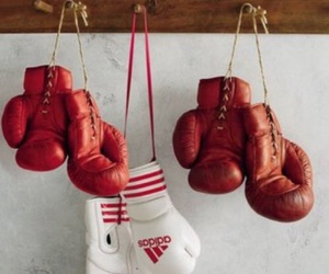 boxing, sport, and aesthetic image
