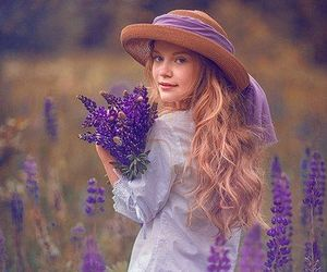 lavender and lavender fields image