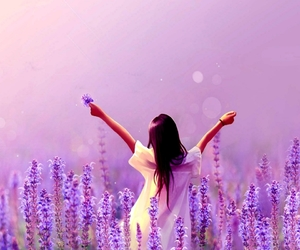 beautiful, lavender, and lavender fields image