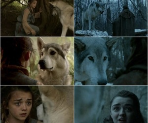 arya stark, game of thrones, and maisie williams image