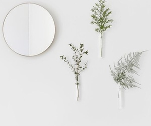 mirror, plants, and minimal image