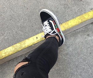 roses and vans image