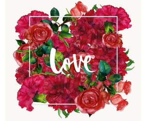 red, love, and flowers image