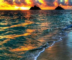 beach, sunset, and nature image