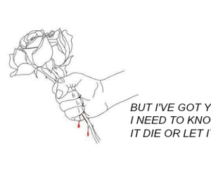 header and Lyrics image