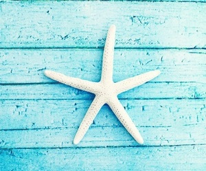 blue, summer, and stars image