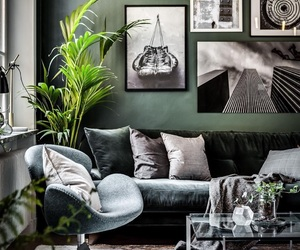 green, home, and inspiration image