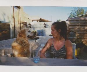 analogue, friendship, and dog image