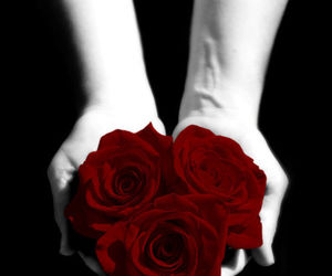 black, red, and colorsplash image