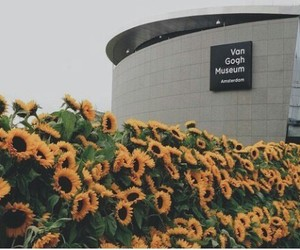 museum, art, and flowers image