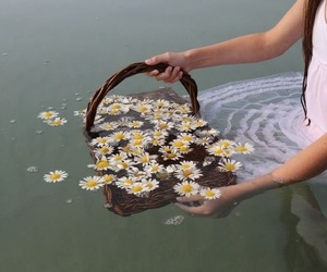 flowers, water, and grunge image