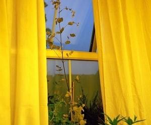 yellow, aesthetic, and window image