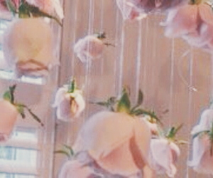 aesthetic, flowers, and header image
