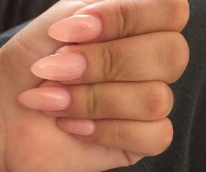 baby pink, beauty, and long nails image