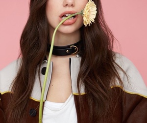 dua lipa, flowers, and dua image