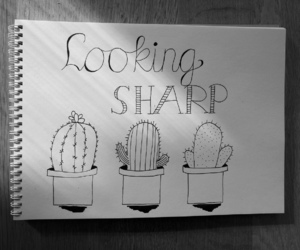 cactus, drawing, and handlettering image