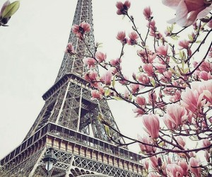 eiffel tower, europe, and flowers image