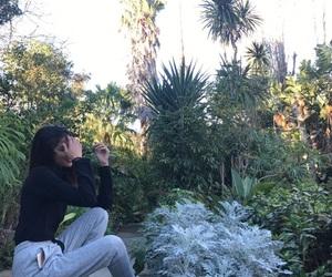 alternative, tumblr, and garden image