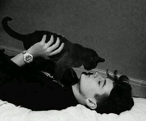 boy, cat, and grunge image