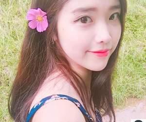 asian, flower, and korean image