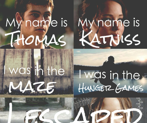 thomas, katniss everdeen, and the hunger games image