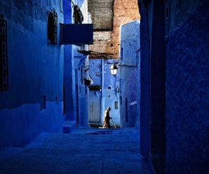 beautiful, blue, and national geographic image