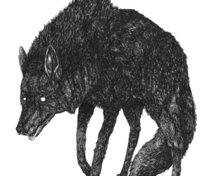 animal, black and white, and pen and ink image
