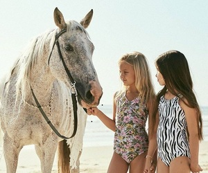 cool, fashion, and horse image