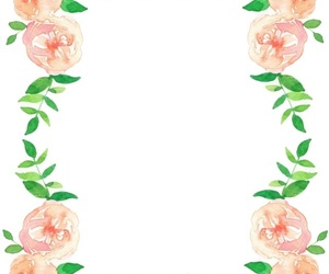 background, flowers, and roses image