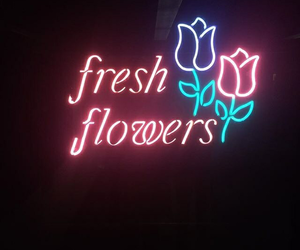 aesthetic, indie, and flowers image