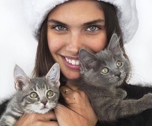 cat, model, and sara sampaio image