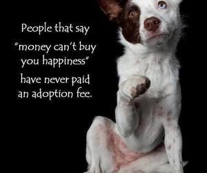 happy, puppy, and truth image