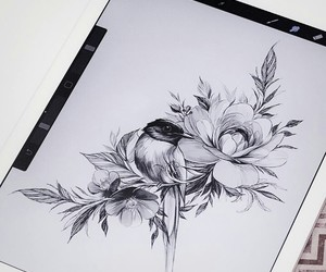 art, bird, and black image