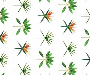 exo, k-pop, and wallpaper image