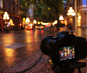 autumn, lights, and night image