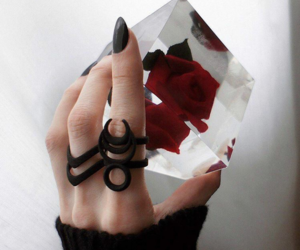 black, hand, and ring image