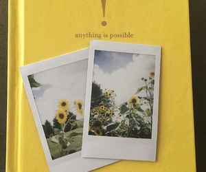 polaroid, yellow, and aesthetic image