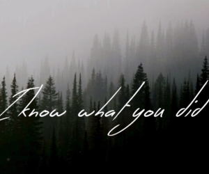 music, quotes, and i know what you did image