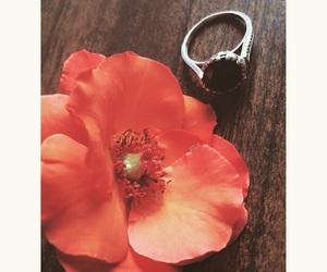 gul, ring, and فضه image