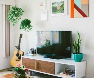 living room and plants image