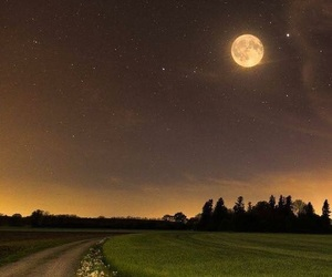 moon, night, and landscape image