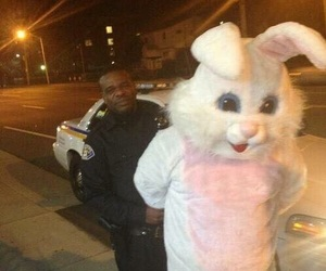 police, rabbit, and grunge image