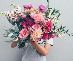 amazing, nature, and flowers image