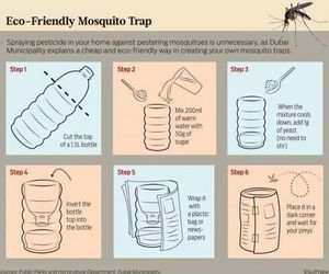 diy, mosquito, and summer image