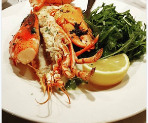 lobster, seafood restaurant, and oyster bar image